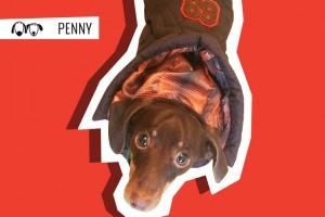 Penny goes shopping for a winter coat!