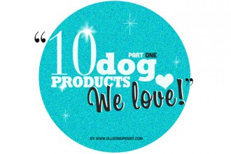 10 Dog Products We Love! ❤