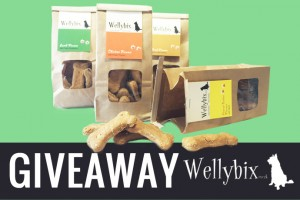 article-standard-image-690x460-giveaway-wellybix
