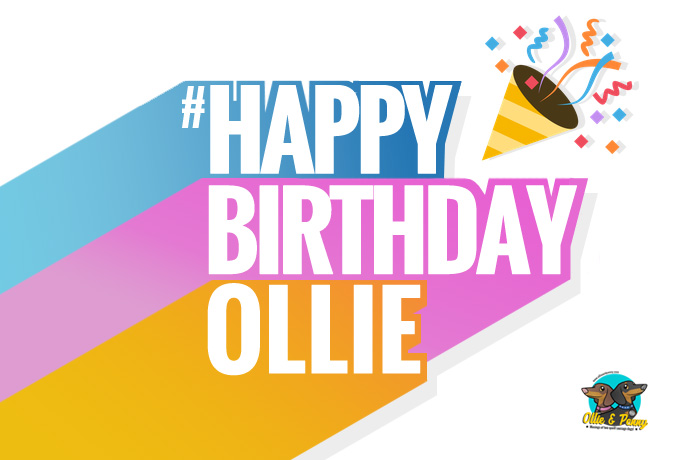 article-standard-image-690x460-happy_birthday_ollie