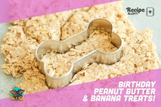 Birthday Peanut Butter & Banana Treats!