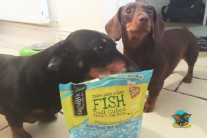 Both Ollie & Penny really love this treats!! We'll be getting them more of these!
