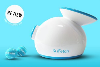 Review: The iFetch Automatic Ball Launcher!