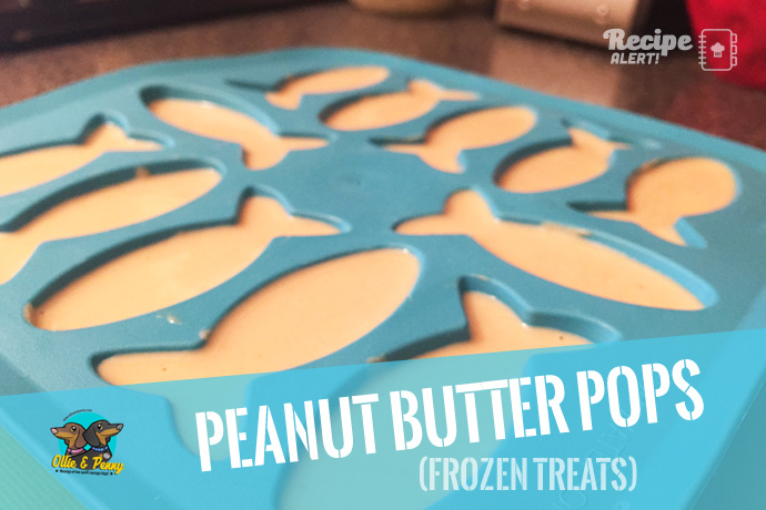 article-standard2-image-690x460_peanutbutter_pops2