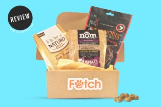 Review: Fetch - Monthly Dog Treat Subscription Boxes!