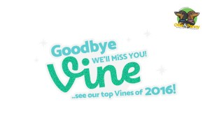 article-standard2-image-750x490_goodbyevine