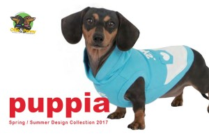 article-standard2-image-750x490-puppia20172