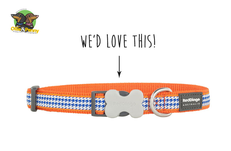 article-standard2-image-750x490_newcollars7