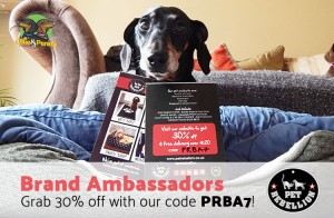 Pet Rebellion - Brand Ambassadors - Ollie & Penny - Ireland