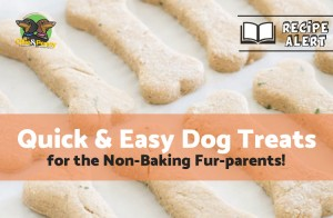 Recipe: Quick & Easy Dog Treats - Ollie & Penny - Ireland