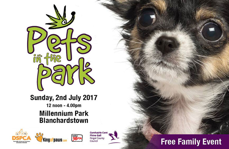 Pets in the Park - Blanchardstown - Event Dublin - Ollie & Penny Blog