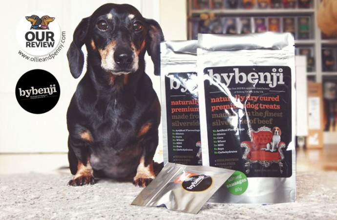 Review ByBenji Biltong Dog Treats - Ollie & Penny Blog Ireland