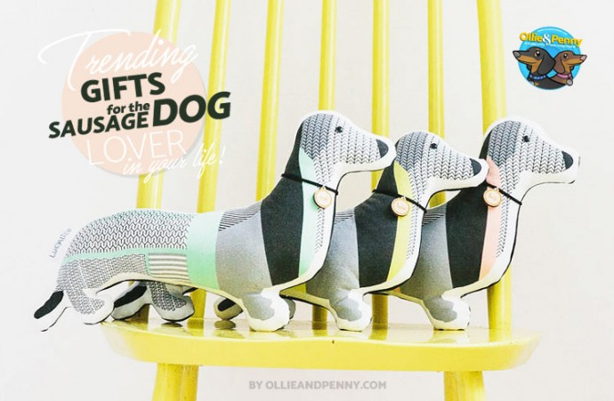 Gift Guide: 10 Trending Gifts for the Sausage Dog Lover in your life!