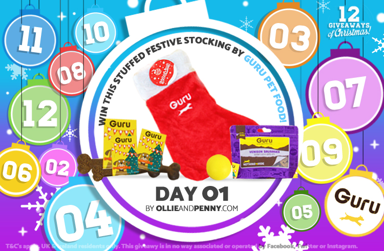 Day One: Guru Pet Food -12 Giveaways of Christmas - Ollie & Penny Blog Ireland