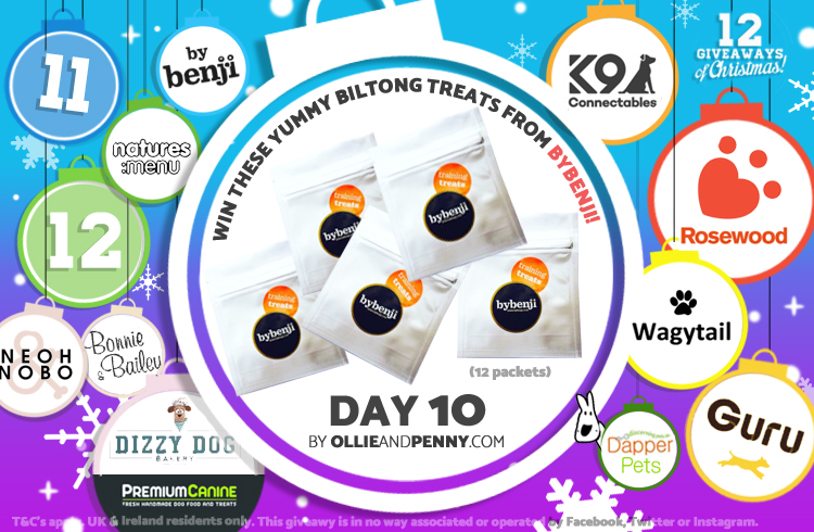 Day 10 - ByBenji -12 Giveaways of Christmas - Ollie & Penny Blog Ireland