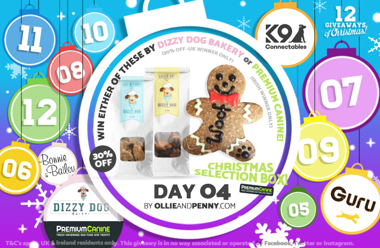 Day 04 - Dizzy Dog Bakery & Premium Canine -12 Giveaways of Christmas - Ollie & Penny Blog Ireland