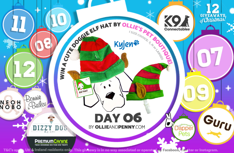 Day 06 - Ollie's Pet Boutique -12 Giveaways of Christmas - Ollie & Penny Blog Ireland