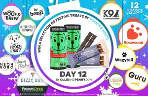 Day 12 - Pooch & Mutt -12 Giveaways of Christmas - Ollie & Penny Blog Ireland
