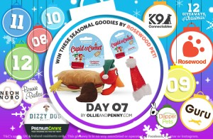 Day 07 - Rosewood Pet -12 Giveaways of Christmas - Ollie & Penny Blog Ireland