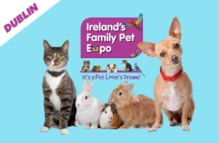 Pet Expo Ireland 2018 - Dublin  - Ollie & Penny Blog