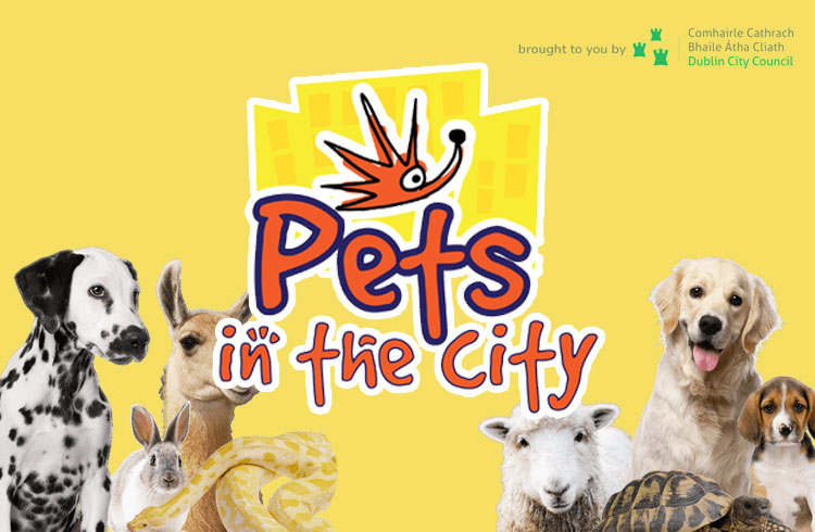 Pets in the City 2018 - Dublin - Ollie & Penny Blog