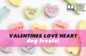 Recipe: Valentines Love Heart Dog Treats - Ollie & Penny Blog Ireland