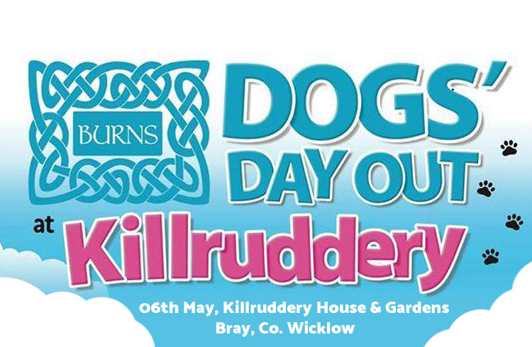 Burns Dogs' Day Out - Killruddery - Ollie & Penny Blog