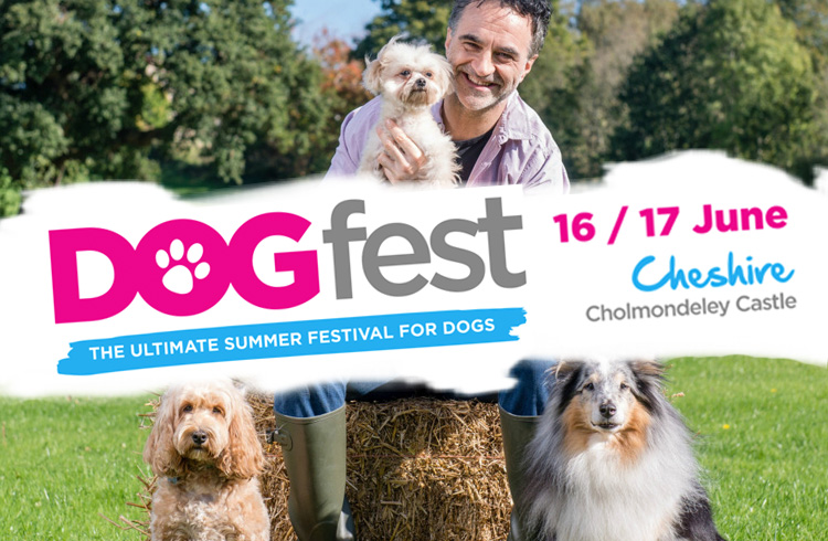 Event - Dogfest 2018 - Cheshire - Ollie & Penny Blog Ireland