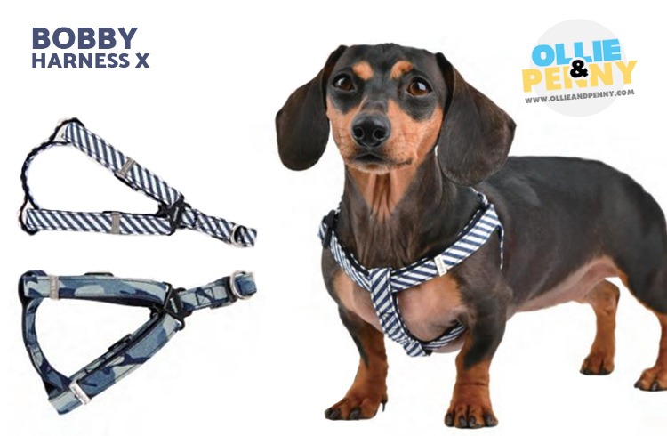 Bobby Harness X - Puppia Spring Summer Collection 2018 - Ollie & Penny Blog Ireland