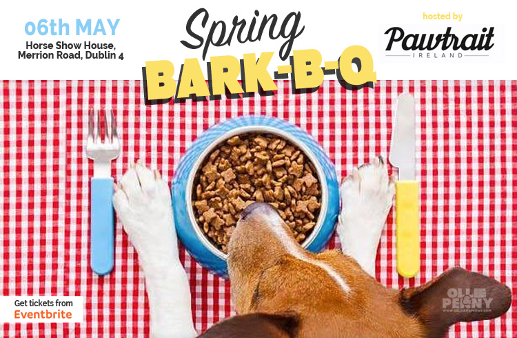 Event: Spring Bark-B-Q hosted by Pawtrait Ireland, Dublin - Ollie & Penny Blog, Ireland