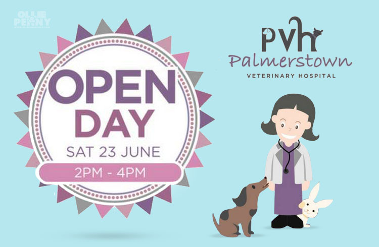 Event: Palmerstown Veterinary Hospital Open Day, Dublin - Ollie & Penny Blog, Ireland