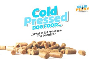 Cold Pressed Dog Food - What is it & What are the benefits? - Ollie & Penny Blog Ireland