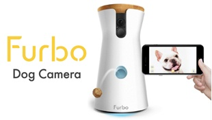 Furbo Dog Camera – Ollie & Penny Blog