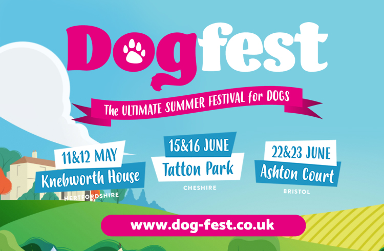 Events: DogFest 2019 with Noel Fitzpatrick - Ollie & Penny Blog - Ireland