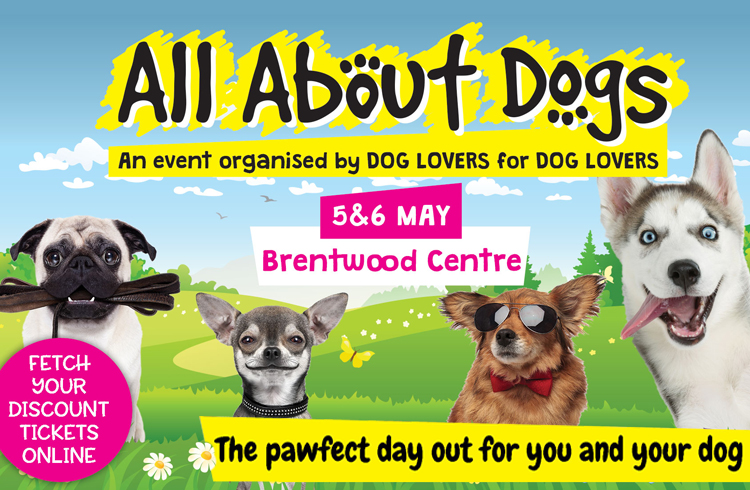 Event: All About Dogs - Brentwood Centre, Essex - Ollie'& Penny Blog - Ireland
