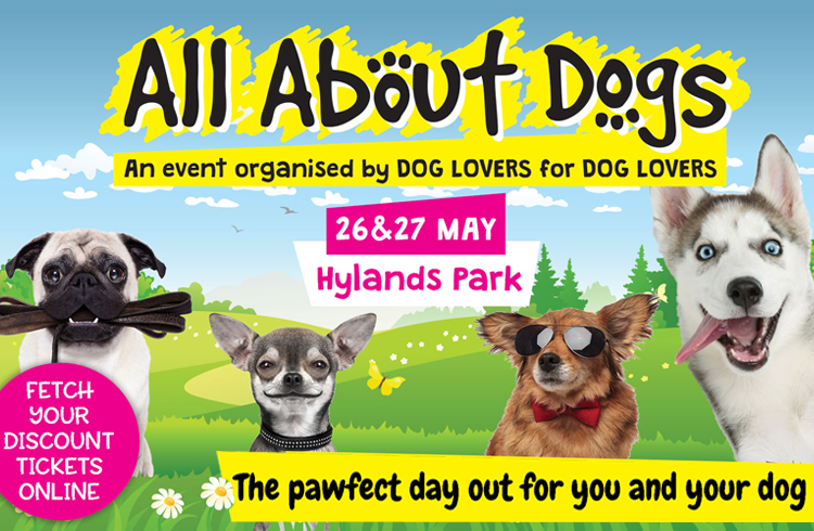 Event: All About Dogs - Hylands Park, Essex - Ollie'& Penny Blog - Ireland
