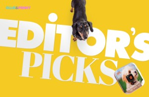 Editor's Pick: The PitPat Dog Activity Monitor! - Ollie & Penny Blog - Ireland
