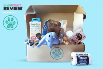 Review: The Pawfection Pack - March Dumbo Themed Box!*