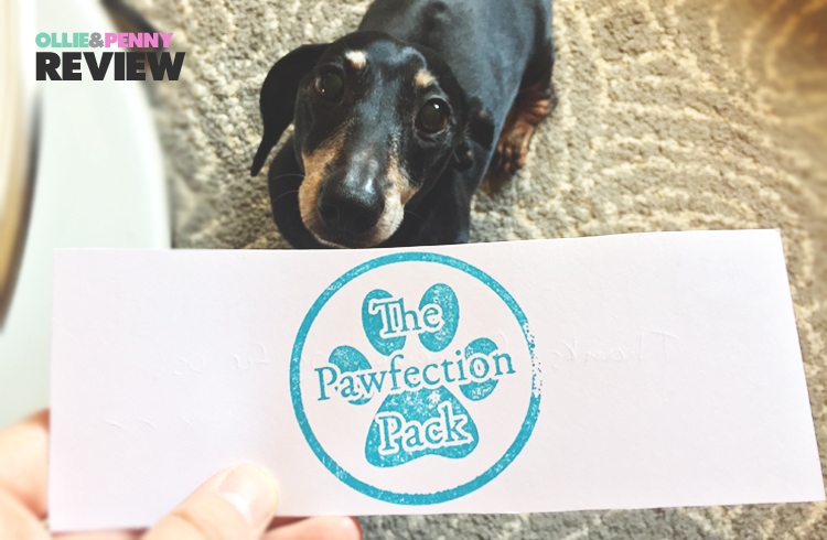 Review: The Pawfection Pack  March Dumbo Box! - Ollie & Penny Blog - Ireland