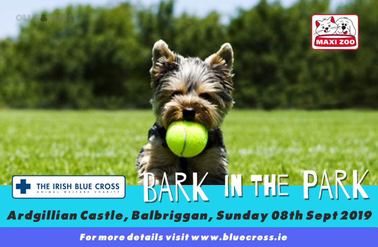 Event: Irish Blue Cross - Bark in the Park 2019 - Ardgillan Castle