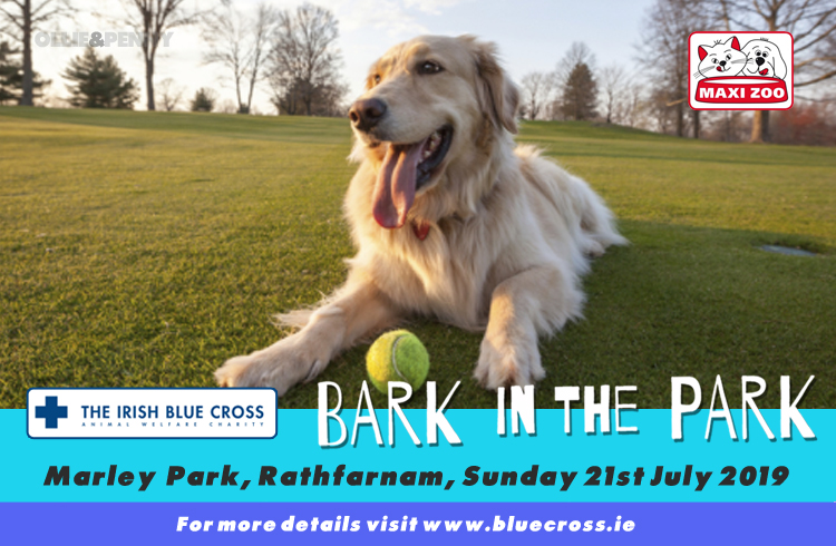 Event: Irish Blue Cross - Bark in the Park 2019 - Marley Park