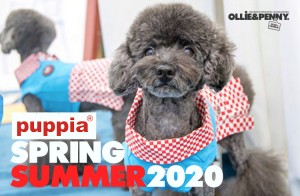 Puppia: Spring / Summer Collection 2020 Preview - Ollie & Penny Blog   Ireland