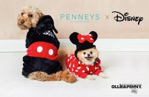 Penneys x Disney Pet Collection + More!